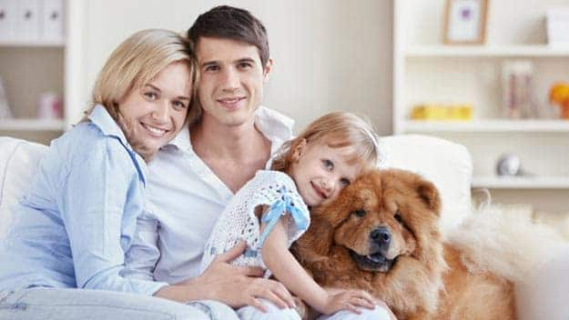 Wills & Trusts dog-young-family Direct Wills West Norwood
